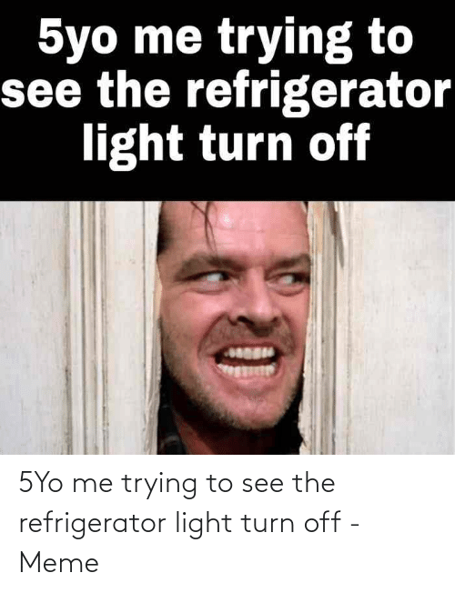 Me Trying: 5Yo me trying to see the refrigerator light turn off - Meme