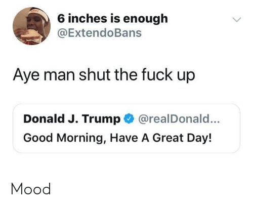Mood, Good Morning, and Fuck: 6 inches is enough  @ExtendoBans  Aye man shut the fuck up  Donald J. Trump @realDonald...  Good Morning, Have A Great Day! Mood