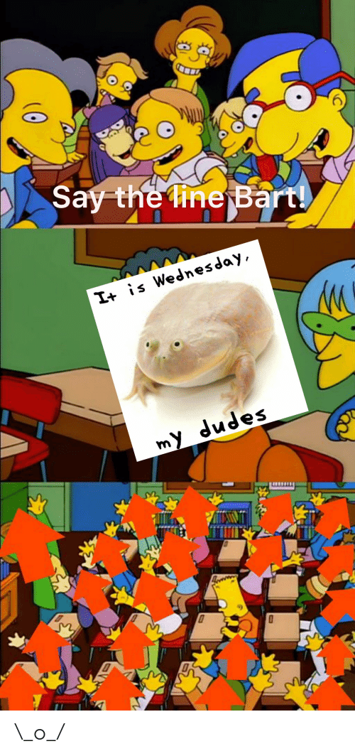 Wednesday, My-Dudes, and Dudes: 6  th  |+ s Wednesday  my dudes \_o_/