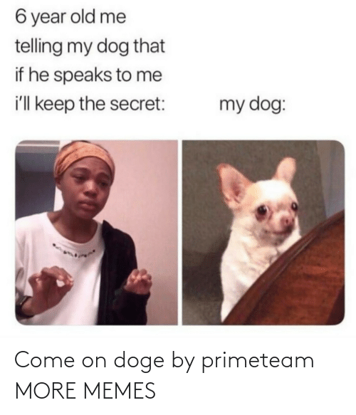 If He: 6 year old me  telling my dog that  if he speaks to me  i'll keep the secret:  my dog: Come on doge by primeteam MORE MEMES