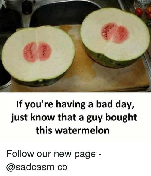 Watermelone: 63  If you're having a bad day,  just know that a guy bought  this watermelon Follow our new page - @sadcasm.co