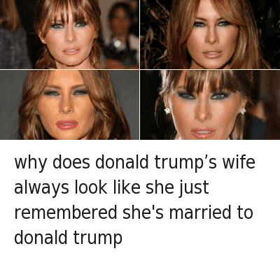 Top 20 Donald Trump Memes - 02/19/2016: why does donald trump's wife always look like she just remembered she's married to donald trump