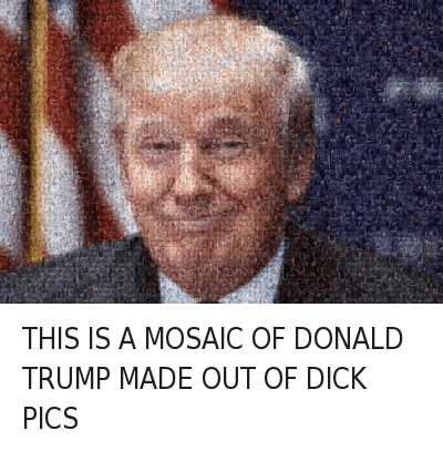 Top 20 Donald Trump Memes - 02/19/2016: THIS IS A MOSAIC OF DONALD TRUMP MADE OUT OF DICK PICS THIS IS A MOSAIC OF DONALD TRUMP MADE OUT OF DICK PICS