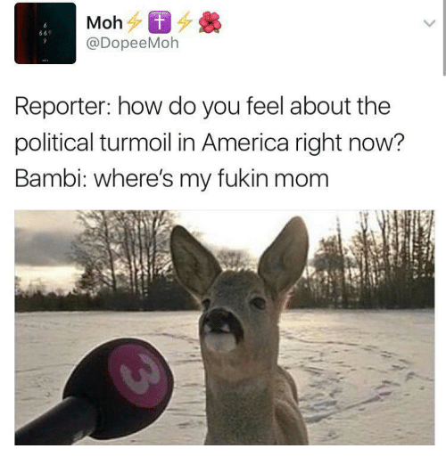 Bambi: 69  @DopeeMoh  Reporter: how do you feel about the  political turmoil in America right now?  Bambi: where's my fukin mom