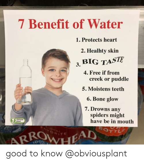 benefit: 7 Benefit of Water  Protects heart  2. Healhty skin  3, BIG TASTE  4. Free if from  creek or puddle  5. Moistens teetlh  6. Bone glow  7. Drowns any  spiders might  have be in mouth  obvious  plant  RITE  109 good to know @obviousplant