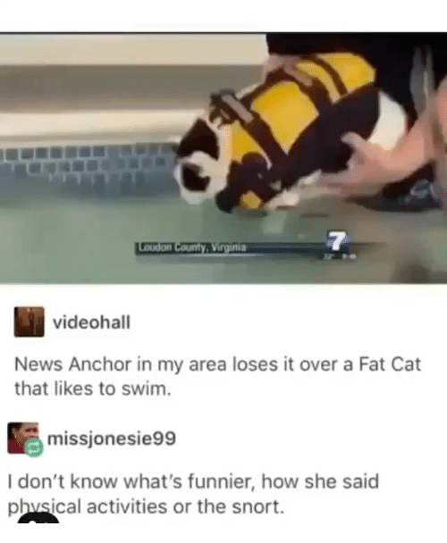 snort: 7  videohall  News Anchor in my area loses it over a Fat Cat  that likes to swim.  missjonesie99  I don't know what's funnier, how she said  phvsical activities or the snort.