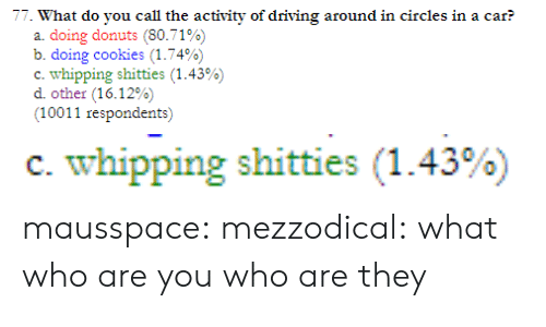 Donuts: 77. What do you call the activity of driving around in circles in a car?  a. doing donuts (80.71%)  b. doing cookies (1.74%)  c-whipping shitties (1.43%)  other (16.12%)  (10011 respondents)   c. whipping shitties (1.43%) mausspace:  mezzodical:  what  who are you who are they