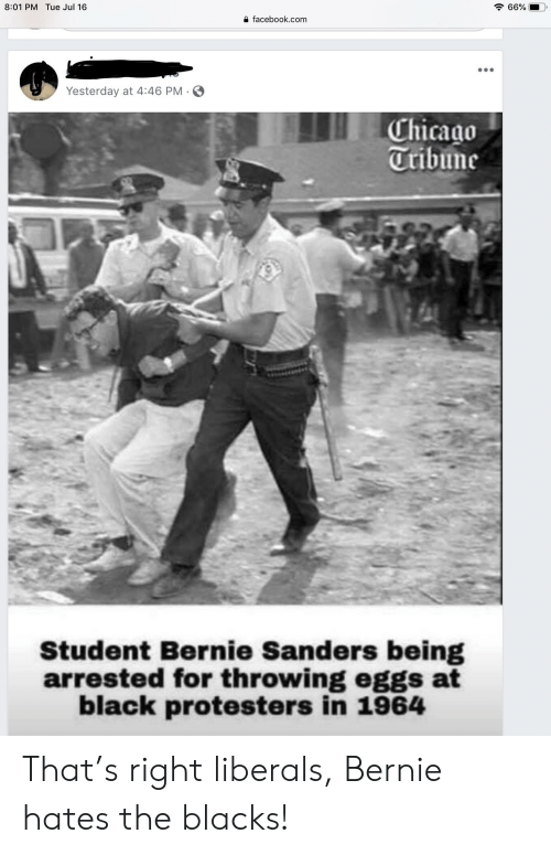 Bernie Sanders, Chicago, and Facebook: 8:01 PM Tue Jul 16  66%  facebook.com  Yesterday at 4:46 PM  Chicago  Tribune  Student Bernie Sanders being  arrested for throwing eggs at  black protesters in 1964 That's right liberals, Bernie hates the blacks!