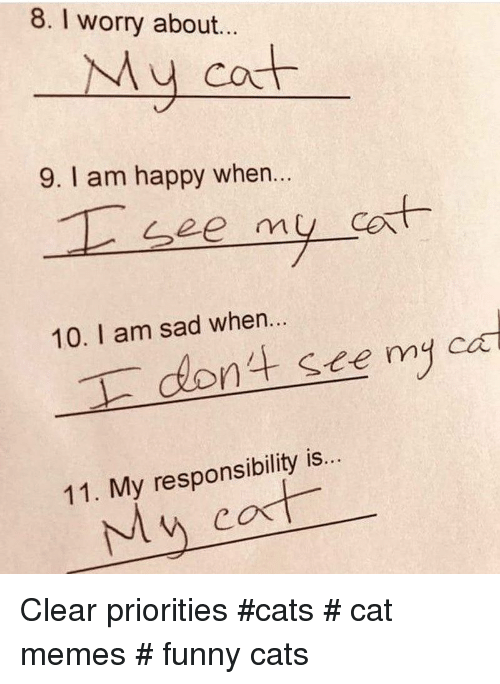 Cats, Funny, and Memes: 8. I worry about.  My cot  9. I am happy when...  at  10. I am sad when...  nt see myca  11. My responsibility is. Clear priorities  #cats # cat memes # funny cats