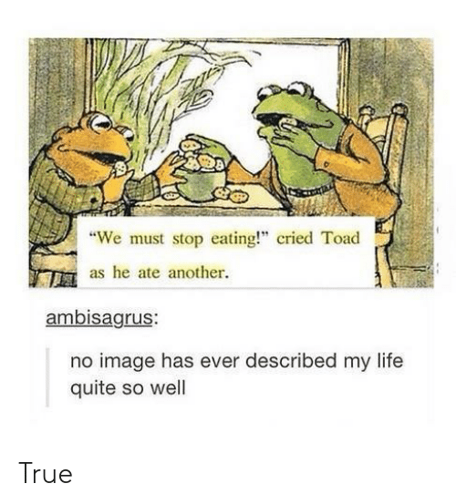 "We Must Stop Eating Cried Toad As He Ate Another: 8  ""We must stop eating!"" cried Toad  as he ate another  ambisagrus:  no image has ever described my life  quite so well True"