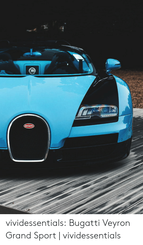 Tumblr, Blog, and Bugatti: 8400 vividessentials:    Bugatti Veyron Grand Sport | vividessentials
