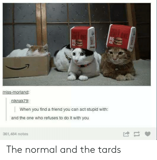 Tards: 8l  miss-morland  niknak7g  When you find a friend you can act stupid with:  and the one who refuses to do it with you  361,484 notes The normal and the tards