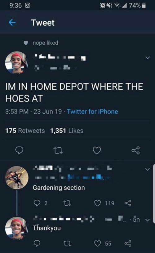 The Hoes: 9:36 O  74%  Tweet  nope liked  IM IN HOME DEPOT WHERE THE  HOES AT  3:53 PM 23 Jun 19 Twitter for iPhone  175 Retweets 1,351 Likes  Gardening section  2  119  P 5n  Thankyou  55  >