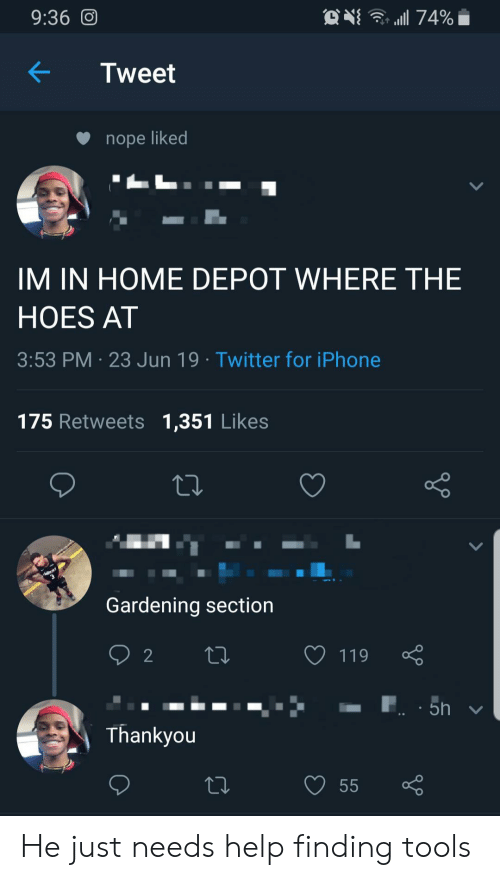 The Hoes: 9:36 O  74%  Tweet  nope liked  IM IN HOME DEPOT WHERE THE  HOES AT  3:53 PM 23 Jun 19 Twitter for iPhone  175 Retweets 1,351 Likes  Gardening section  2  119  5h  Thankyou  55 He just needs help finding tools