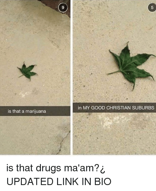 MêMes: 9  5  in MY GOOD CHRISTIAN SUBURBS  is that a marijuana is that drugs ma'am?¿ UPDATED LINK IN BIO