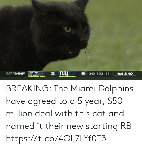 Miami Dolphins: 9  ESFTMNF  1st&10  2ND 5:32 25  4-3  2-6 BREAKING: The Miami Dolphins have agreed to a 5 year, $50 million deal with this cat and named it their new starting RB https://t.co/4OL7LYf0T3