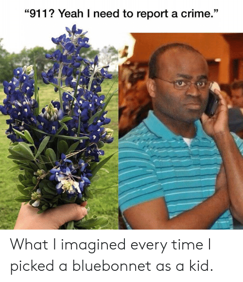 """Crime, Yeah, and Texas: """"911? Yeah I need to report a crime."""" What I imagined every time I picked a bluebonnet as a kid."""