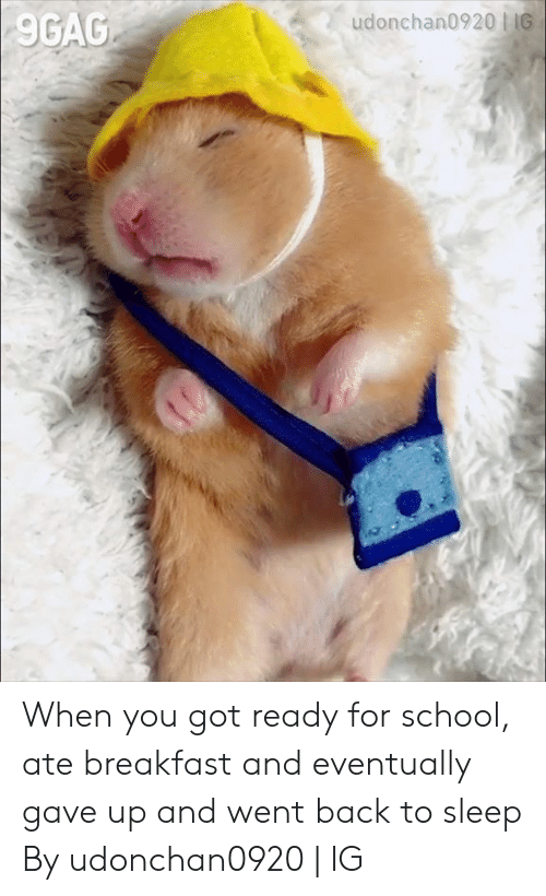 9gag, Dank, and School: 9GAG When you got ready for school, ate breakfast and eventually gave up and went back to sleep  By udonchan0920   IG