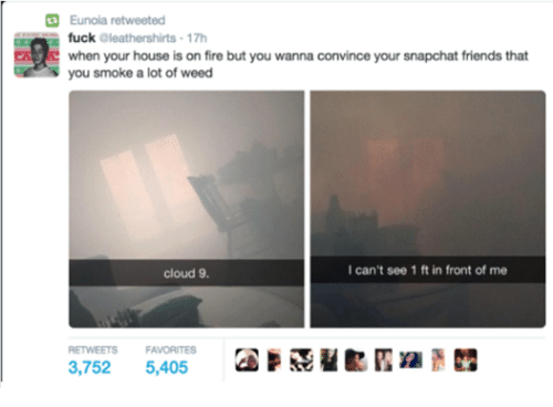 Fire, Friends, and Fucking: Eunoia retweeted  fuck  aleathershirts 17h  when your house is on fire  but you wanna convince your snapchat friends that  you smoke a lot of weed  I can't see 1 ft in front of me  cloud 9.  RETWEETS FAVORITES  3,752  5,405