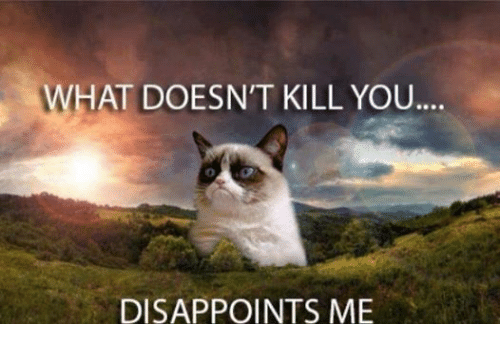 What Doesnt Kill You Disappoints Me