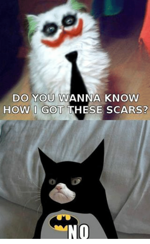 Wanna Know How I Got These Scars