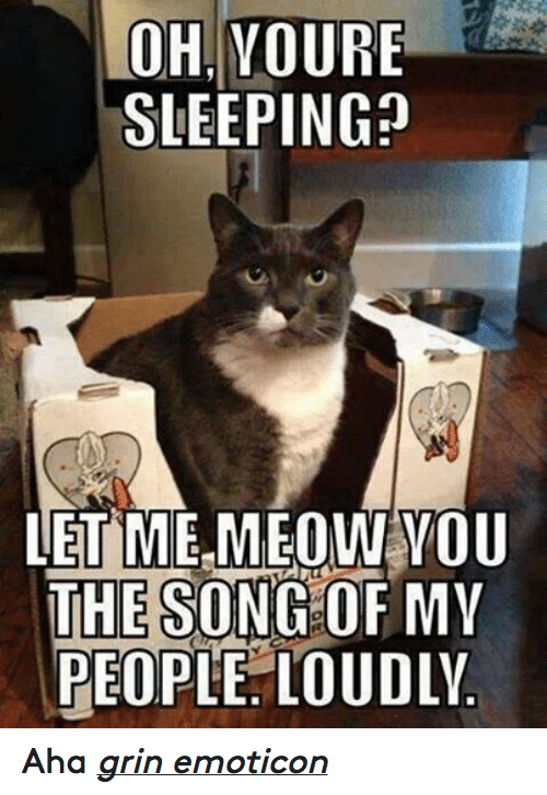 Song Of My People