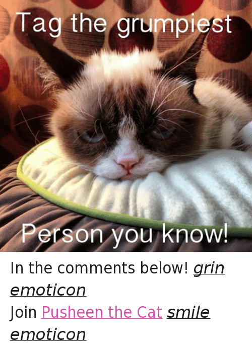 Cat Smiling: Tag the grumpiest  P  erson you know  ! In the comments below! grin emoticon  Join Pusheen the Cat smile emoticon