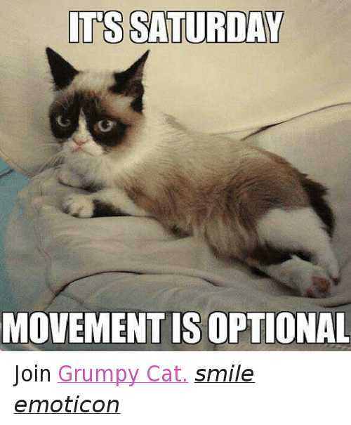 Cat Smiling: ITS SATURDAY  MOVEMENT IS OPTIONAL Join Grumpy Cat. smile emoticon