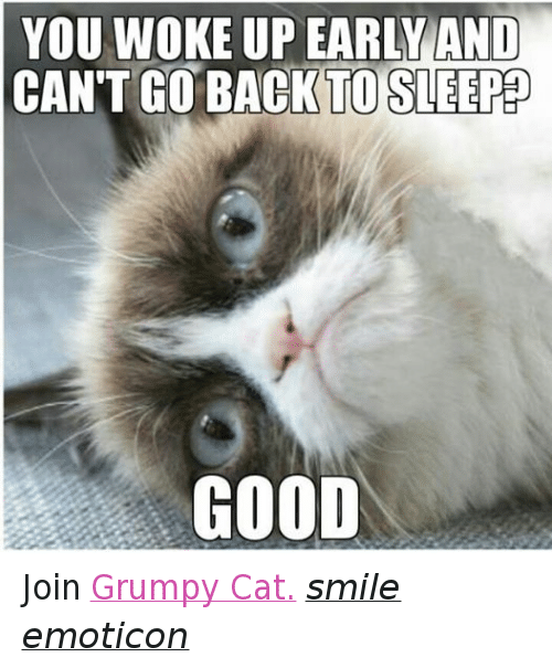 Cat Smiling: YOU WOKE UP EARLY AND  CANT GO BACK TO SLEEP  GOOD Join Grumpy Cat. smile emoticon