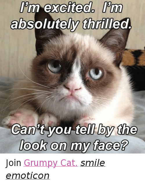 Cat Smiling: Pm excited. Prm  absolutely thrilled  Can't you tell by the  look on my face? Join Grumpy Cat. smile emoticon