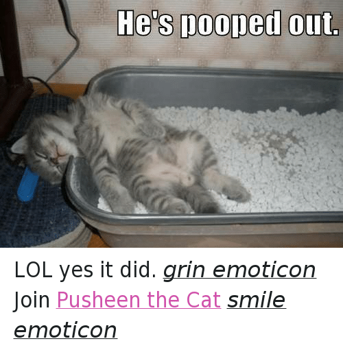 Cat Smiling: He's pooped out LOL yes it did. grin emoticon  Join Pusheen the Cat smile emoticon