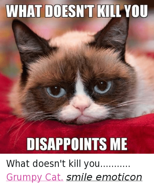 Cat Smiling: WHAT DOESN'T KILL YOU DISAPPOINTS ME What doesn't kill you........... Grumpy Cat. smile emoticon