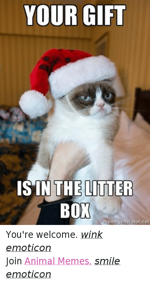 Meme Smile: YOUR GIFT  IS IN THE LITTER  BOX  memegenerator.net You're welcome. wink emoticon  Join Animal Memes. smile emoticon