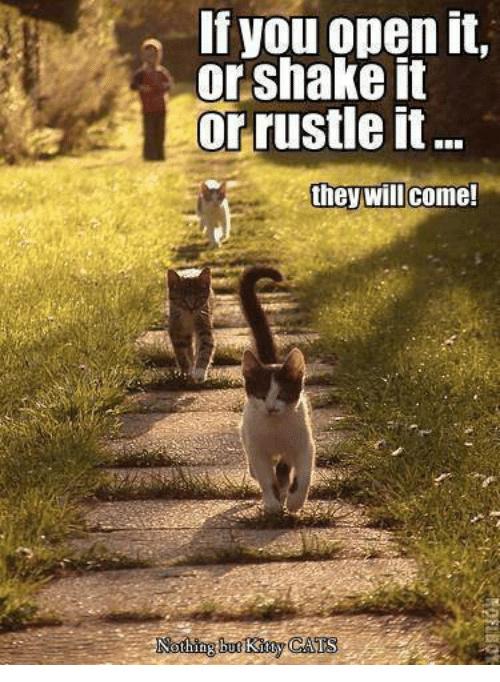 Rustle: If you open it.  or shake it  or rustle it  they will come!  Nath