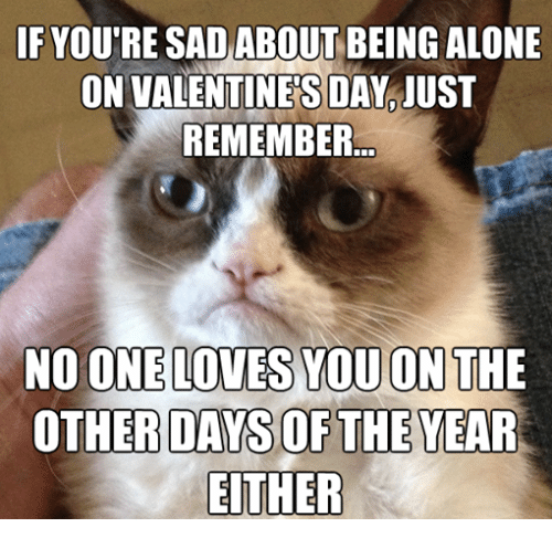 Alone On Valentines Day: IF YOUTRE SAD ABOUT BEING ALONE  ON VALENTINES DAY IUST  REMEMBER  NO ONE LOVES YOU ON THE  OTHER DAYS OF THE YEAR  EITHER