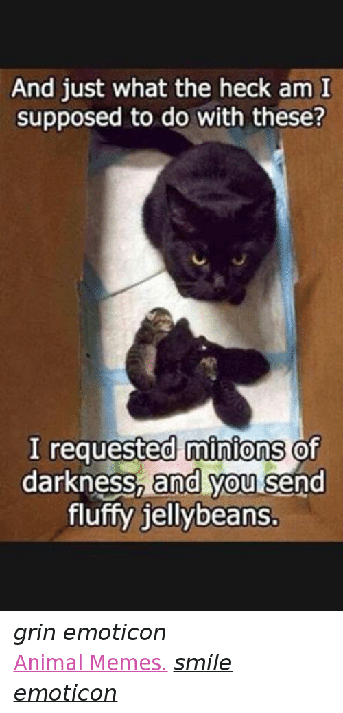 Meme Smile: And just what the heck am I  supposed to do with these?  I requested minions  of  darkness, and you  send  fluffy jellybeans. grin emoticon  Animal Memes. smile emoticon