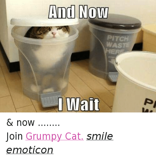 Cat Smiling: And Now  PITCH  I Wait & now ........ Join Grumpy Cat. smile emoticon