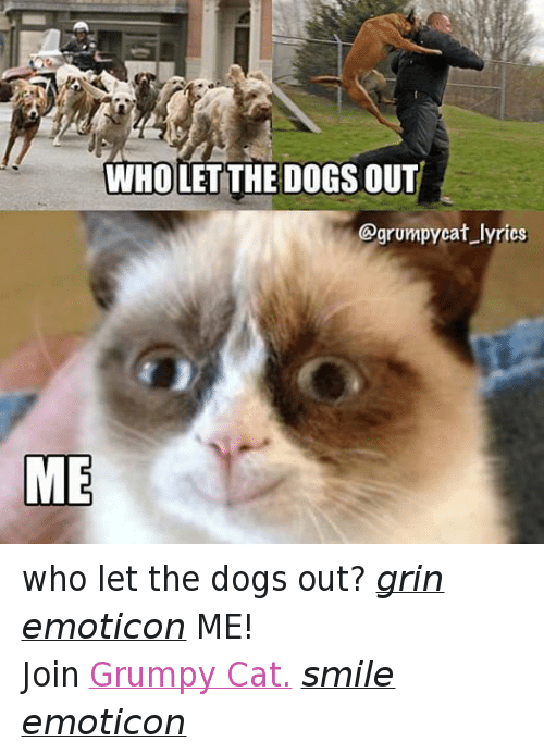 Cat Smiling: WHOLET THE DOGS OUT  @grumpy cat lyrics  ME who let the dogs out? grin emoticon ME! Join Grumpy Cat. smile emoticon