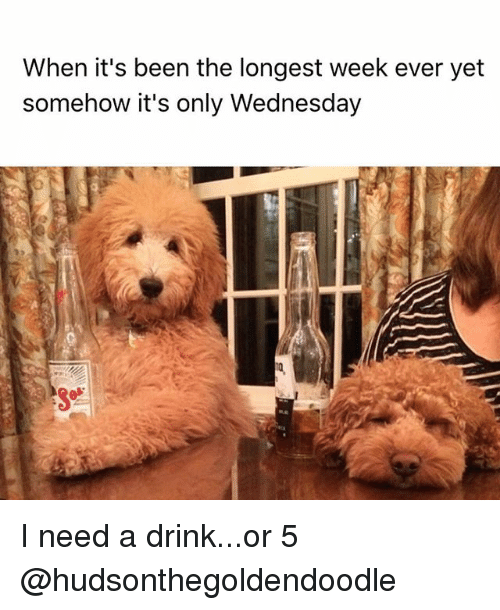 Need A Drink