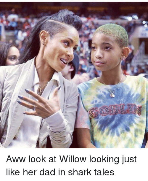 willow smith: Aww look at Willow looking just like her dad in shark tales