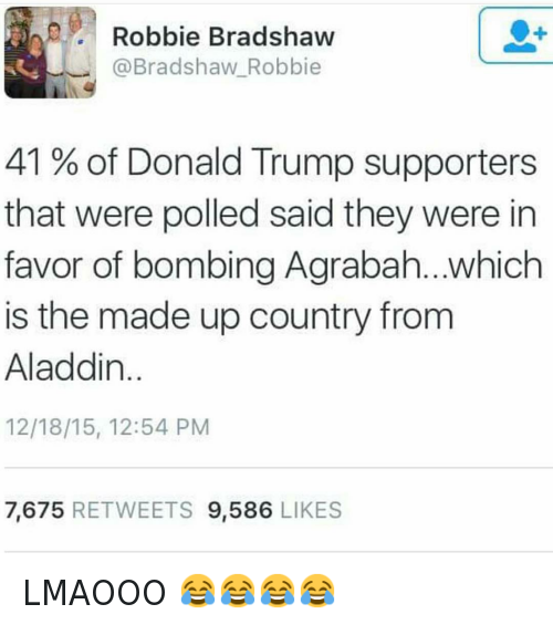 Top 20 Donald Trump Memes - 02/19/2016: @hoodshiet  @Bradshaw Robbie  41% of Donald Trump supporters that were polled said they were in favor of bombing Agrabah...which is the made up country from Aladdin. LMAOOO 😂😂😂😂