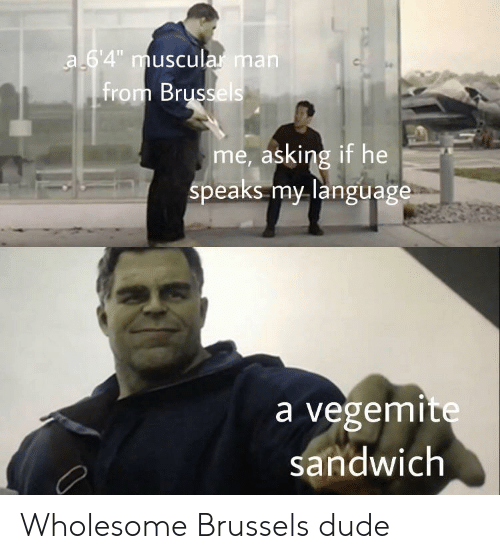 "Dude, Wholesome, and Asking: a 64"" muscular man  from Brussels  me, asking if he  speaks my language  a vegemite  sandwich Wholesome Brussels dude"