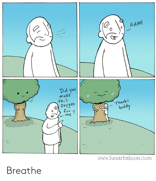 Oxygen: A AAH  Did You  make  this  OxYgen  for  Thanks  buddy  me  www.lunarbaboon.com Breathe