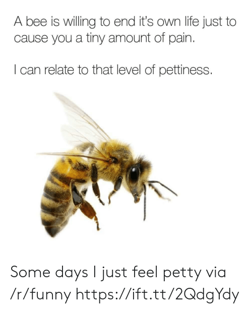 Funny, Life, and Petty: A bee is willing to end it's own life just to  cause you a tiny amount of pain  I can relate to that level of pettiness. Some days I just feel petty via /r/funny https://ift.tt/2QdgYdy