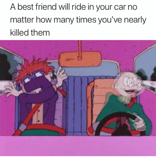Best Friend, How Many Times, and Best: A best friend will ride in your car no  matter how many times you've nearly  killed them