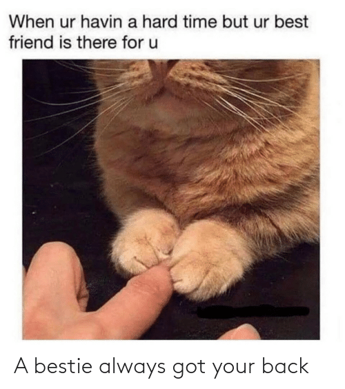 bestie: A bestie always got your back