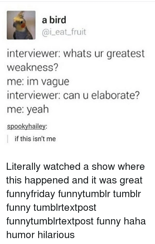 Spooki: a bird  Cai eat fruit  interviewer: whats ur greatest  weakness?  me: Im vague  interviewer: can u elaborate?  me: yeah  spooky hailey:  if this isn't me Literally watched a show where this happened and it was great funnyfriday funnytumblr tumblr funny tumblrtextpost funnytumblrtextpost funny haha humor hilarious