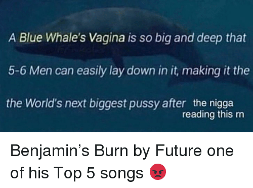 Future, Pussy, and Blue: A Blue Whale's Vagina is so big and deep that  5-6 Men can easily lay down in it, making it the  the World's next biggest pussy after the nigga  reading this rn Benjamin's Burn by Future one of his Top 5 songs 😡