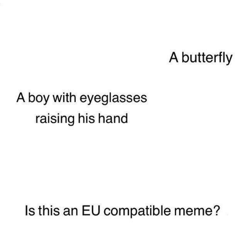 Butterfly: A butterfly  A boy with eyeglasses  raising his hand  Is this an EU compatible meme?