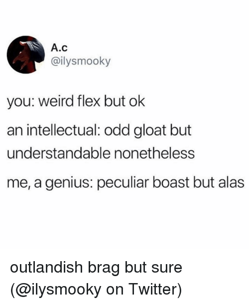 boast: A.c  @ilysmooky  you: weird flex but ok  an intellectual: odd gloat but  understandable nonetheless  me, a genius: peculiar boast but alas outlandish brag but sure (@ilysmooky on Twitter)